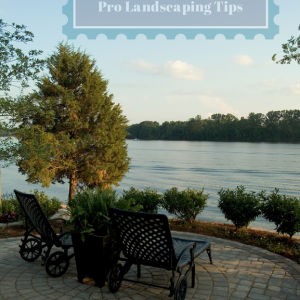 End-of-Summer Landscaping Tips from the Pros