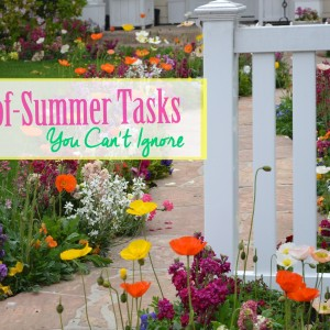 6 End-of-Summer Outdoor Tasks You Can't Ignore